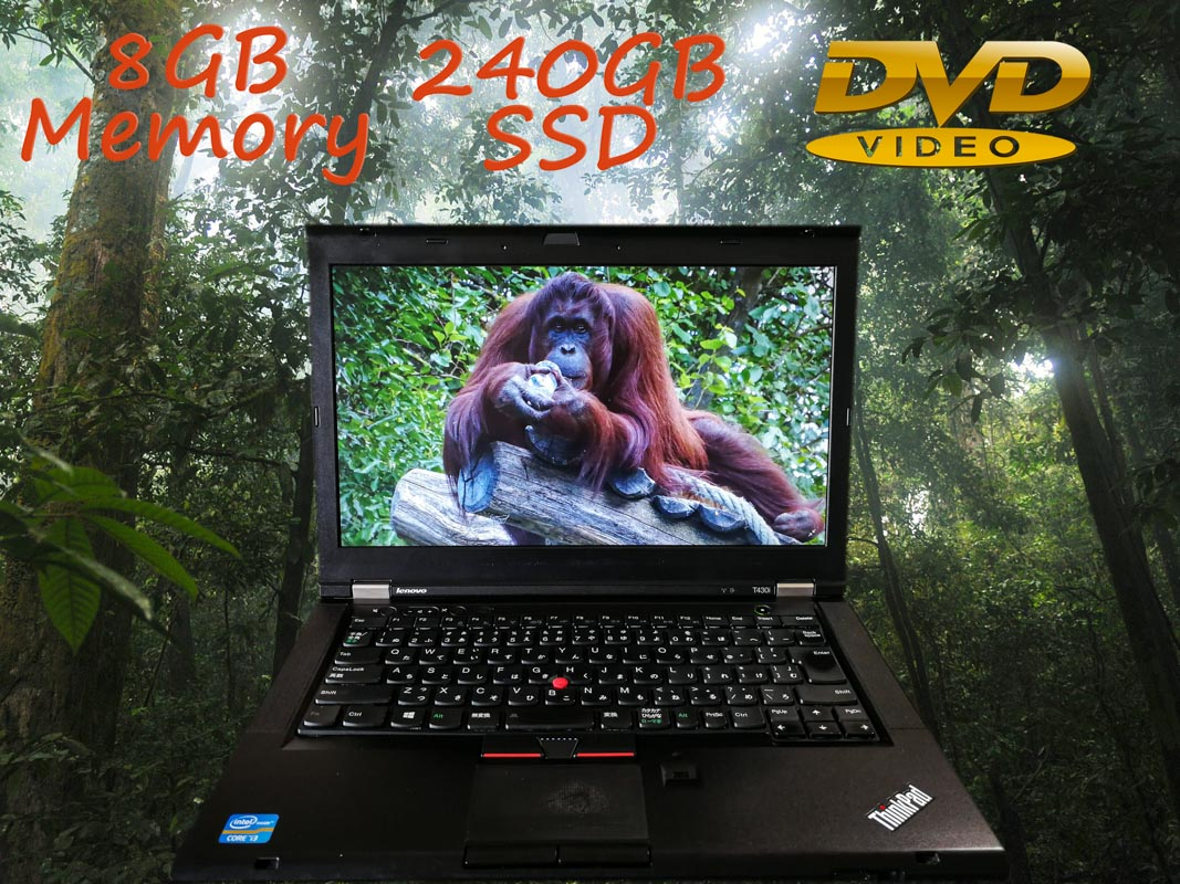 Lenovo ThinkPad T430 (新品SSD,DVD→MP4変換アプリ付) i3  8GB SSD(240GB) DVD(Multi) 14.0(1366×768)  BatteryTime(4h47m)   Win10