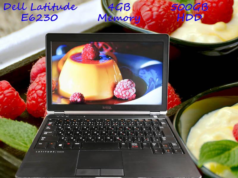 Dell Latitude E6230 i5 4GB HDD(500GB)  12.5(1366×768)  BatteryTime(6h47m) Win10