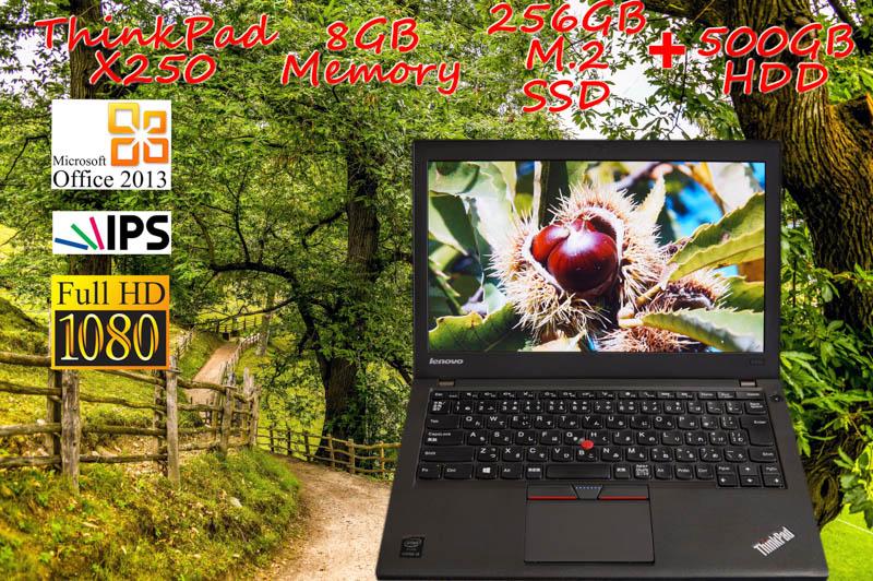 Lenovo ThinkPad X250 i5 8GB SSD(新品M.2 256GB)+HDD(500GB) 画面(fHD IPS 12.5 1920×1080)バッテリ(2基搭載 7h0m)  Bluetooth Win10 Office 2013