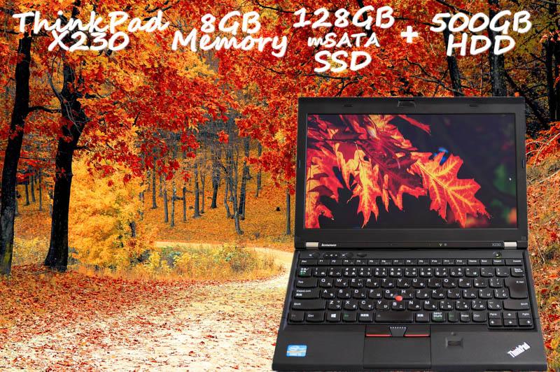 Lenovo ThinkPad X230 i5 8GB SSD(mSATA 128GB)+HDD(500GB) 画面(HD 12.5  1366×768) バッテリ(5h1m) 指紋 Win10